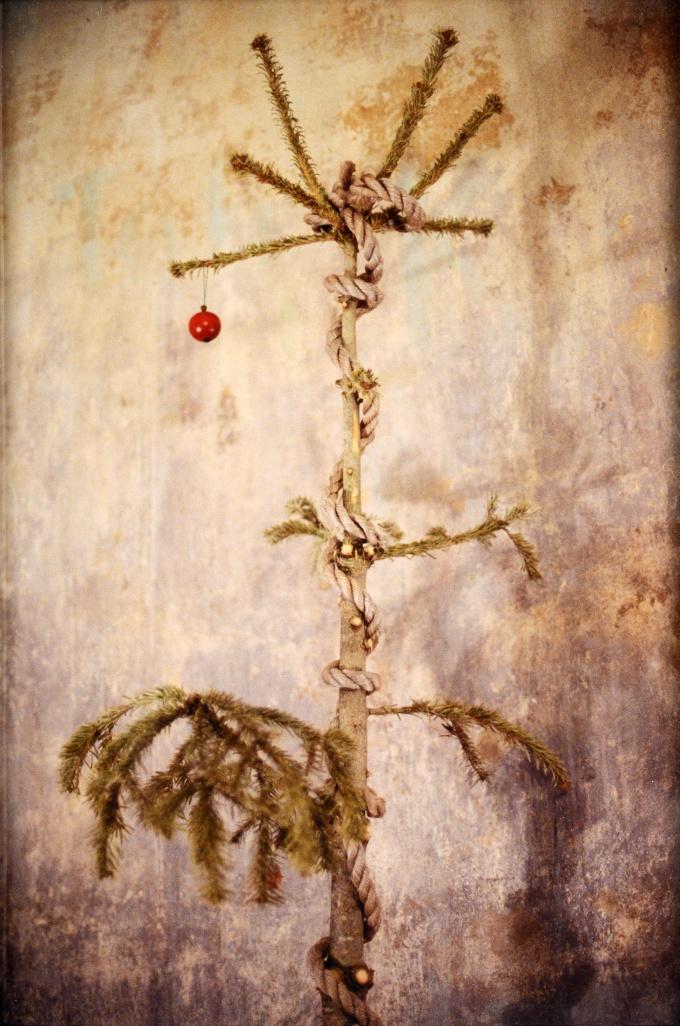 baumrest | odd tree